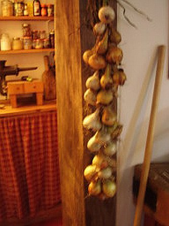 Naomi's onions