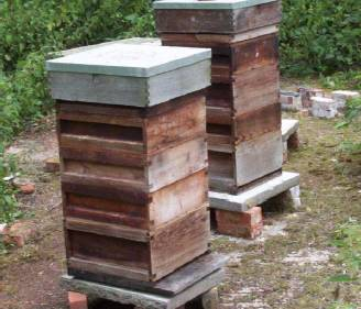 -beehives can be bought cheaply at auction; dates and locations of auctions appear in the �Bee Craft� newsletter (see �Where can I�?�)